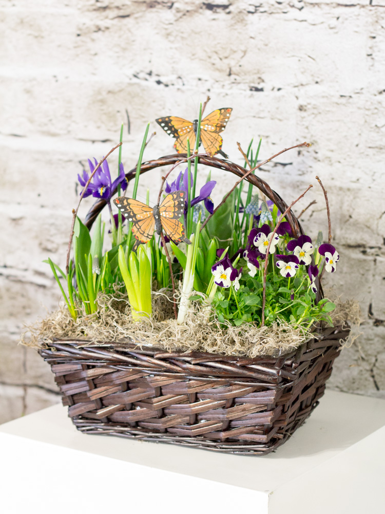 Product_ButterflyBasket_IMG_5660