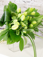 Product_ParrotTulips_IMG_5680