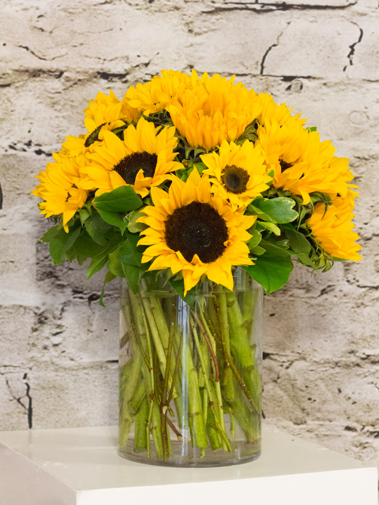 Product_EndlessSunflowers_IMG_3432