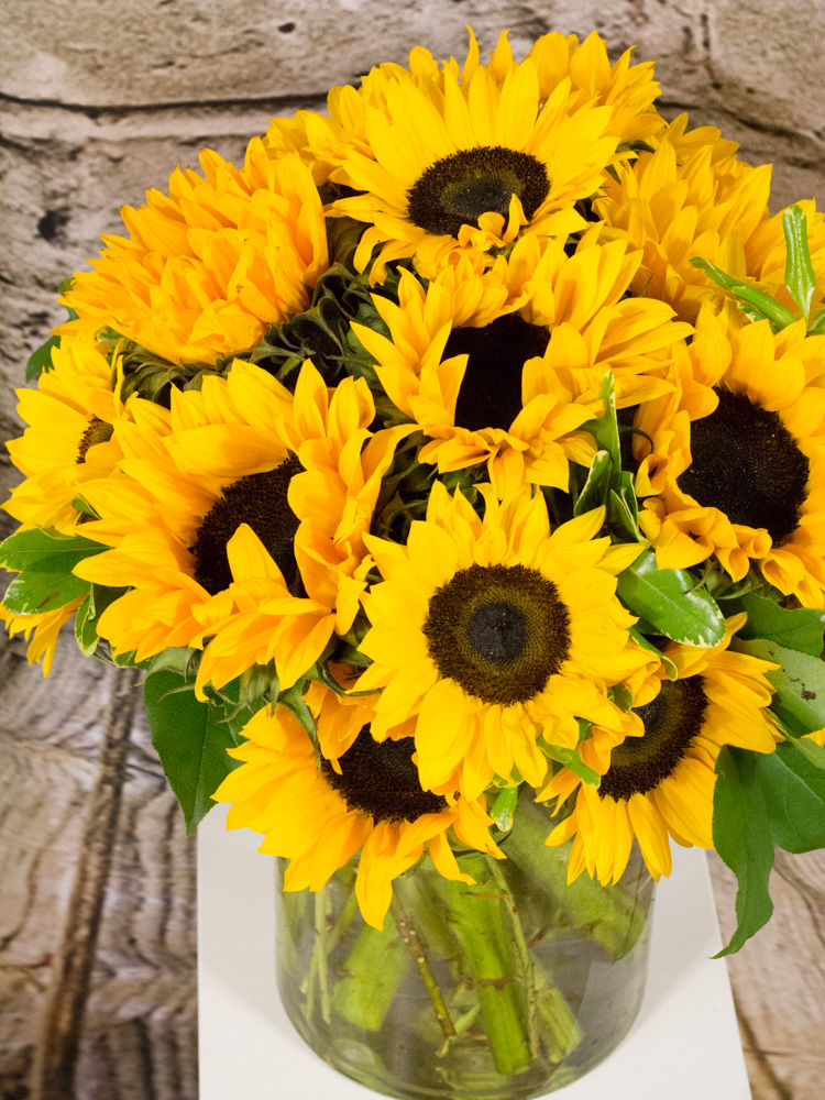 Product_EndlessSunflowers_IMG_3445