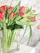 Product_Tulip Waterfall_IMG-8684