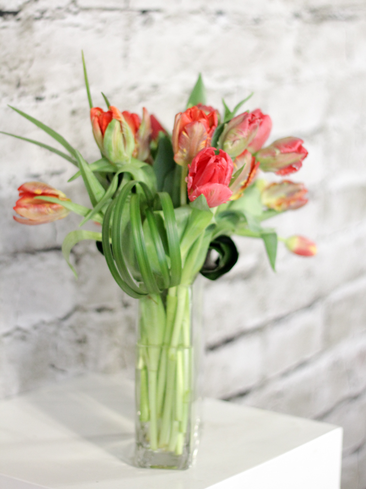 Product_Tulip Waterfall_IMG-8685